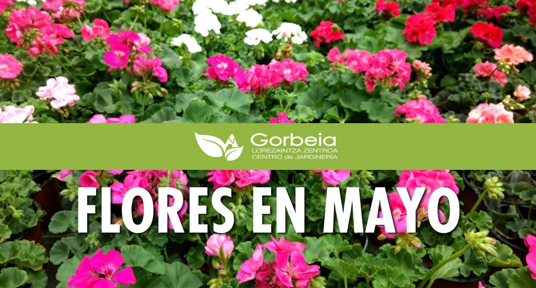 Flores en mayo en el Centro de Jardinería Gorbeia
