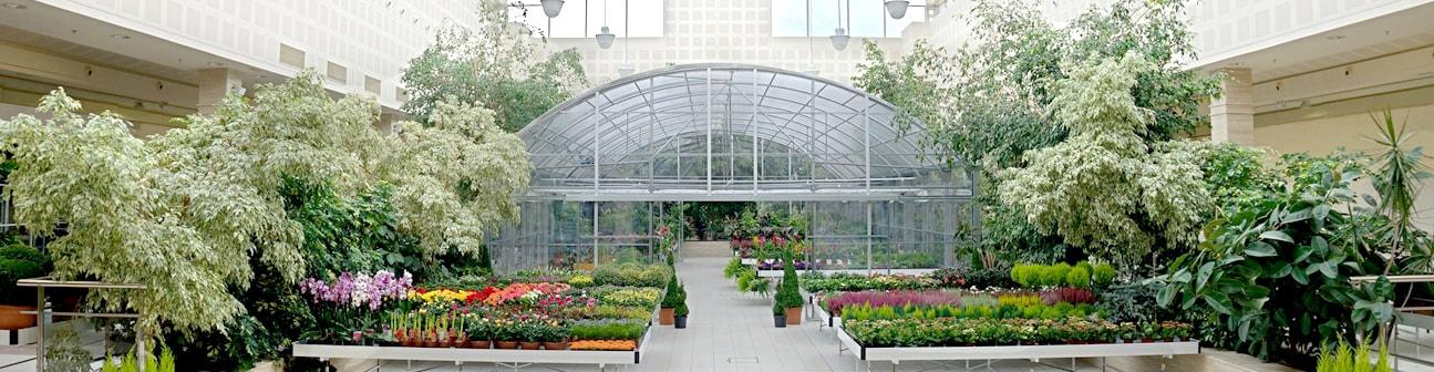 Centro de jardiner a gorbeia centro comercial gorbeia for Jardineria barcelona centro